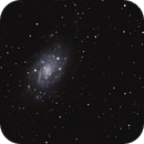 NGC2403 from the suburbs with IDAS filter,                                lowenthalm