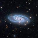 NGC2903 Barred Spiral,                                jeffweiss9