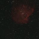 NGC 2175,                                Dennis G.