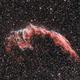 NGC 6992, Eastern Veil Nebula,                                Michael Timm