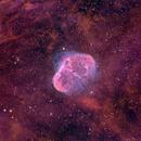 Crescent Nebula HSO Narrowband,                                Antonio.Spinoza