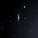 NGC6503,                                Stefano Giardinelli