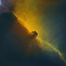 Horsehead nebula Hubble Palette nearly starless,                                Jürgen Ehnes