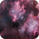 Cygnus,                                Matt Harbison