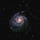 M101 Pinwheel-Galaxy,                                Paul T.