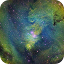 NGC 2264 The Christmas Tree Nebula,                                Pleiades Astropho...