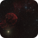 IC 443 - Jellyfish Nebula,                                Fabian Rodriguez...