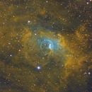 NGC 7635 Hubble Palette,                                Benoit Gagnon
