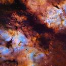 IC 1318 Hubble Pallete - Thanks to RemoteSkies.net :-),                                Daniel Nobre