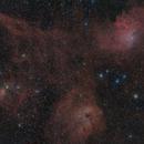 Sh2-229 - Flaming Star Nebula,                                Fabian Rodriguez...
