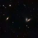 NGC 4567 and NGC 4568 plus SN2020fqv,                                astronate