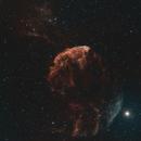 IC 443,                                Angelo F. Gambino