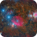 Orion Area,                                Roberto Colombari