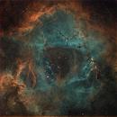 The Rosette Nebula,                                Yoshiharu Yamashita