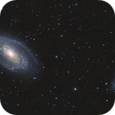 M81 and M82,                                Joostie