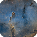 IC 1396a  Elephant's Trunk,                                starfield