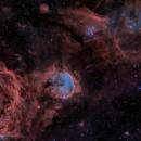 NGC 3324 using RH305,                                Alex Woronow