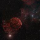 Jellyfish Nebula  4-panel Mosaic,                                Eric Cauble