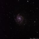 M101, Pinwheel-Galaxie,                                Laurin92