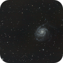 M101,                                latrade24