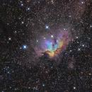 NGC 7380 - Wizard Nebula Hubble Palette,                                Francesco Di Cencio