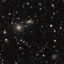 NGC 2274, NGC 2275, UGC 3537 and UGC 3544 Group,                                Riedl Rudolf