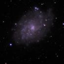 M33  - 20200118 - Bresser AR102-XS,                                altazastro