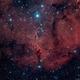 IC1396 - Elephant's Trunk (HaLRGB),                                Richard Bratt