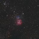 Messier 20 - Trifid Nebula,                                OortCloud