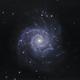 Messier 74 - The Phantom Galaxy,                                Łukasz Sujka
