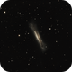 Hamburger Galaxy,                                Everett Lineberry