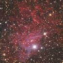 Flaming Star,                                mrezzonico