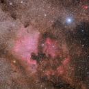 NGC 7000,                                Paweł Koczan