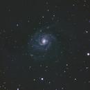 M101,                                tsk1979