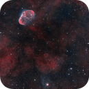 Crescent & Soap Bubble Nebula,                                Barry Wilson