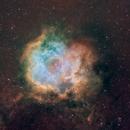 Rosette Nebula in narrowband,                                William Jordan