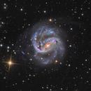 NGC 1672,                                Terry Robison