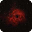 Caldwell 49 + NGC 2244 - Rosette Nebula,                                Michael