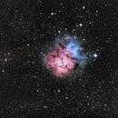 M20 Trifid Nebula,                                Tom Marsala