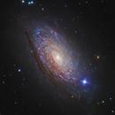 M63 Sunflower Galaxy,                                astro_m