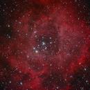 Rosette Nebula,                                Martin Armbrecht