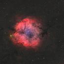 IC 1396 Widefield In HaOIIIRGB,                                Christopher Scott