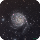 M101 LHARVB,                                TEAM_NEWASTRO