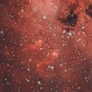IC 410 | The Tadpoles,                                physics5mickey