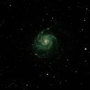 M101,                                Gmoody