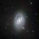 M 96 galaxie spirale dans la constellation du Lion,                                Roger Bertuli