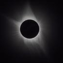 Total Solar Eclipse,                                Aaron Hakala