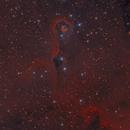 IC 1396,                                Tolga