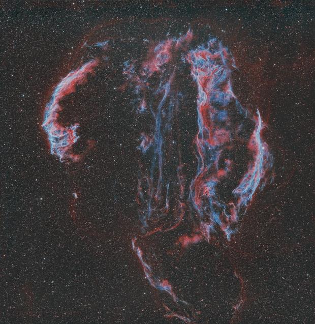 Dentelles du Cygne,                                Frédéric Girard