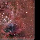 Caldwell 49 – Rosette Nebula,                                Travin